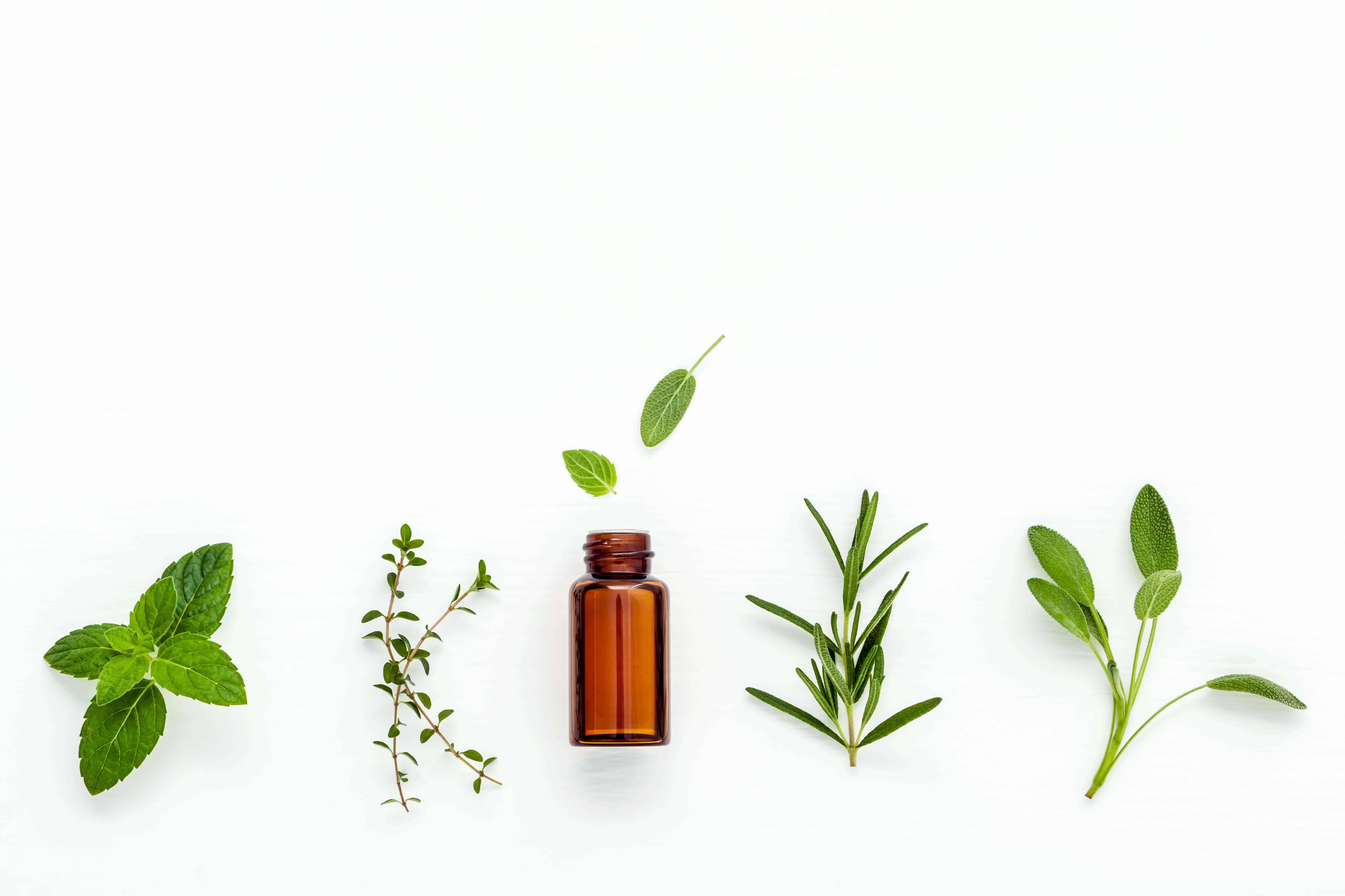 Kosmea ingredients